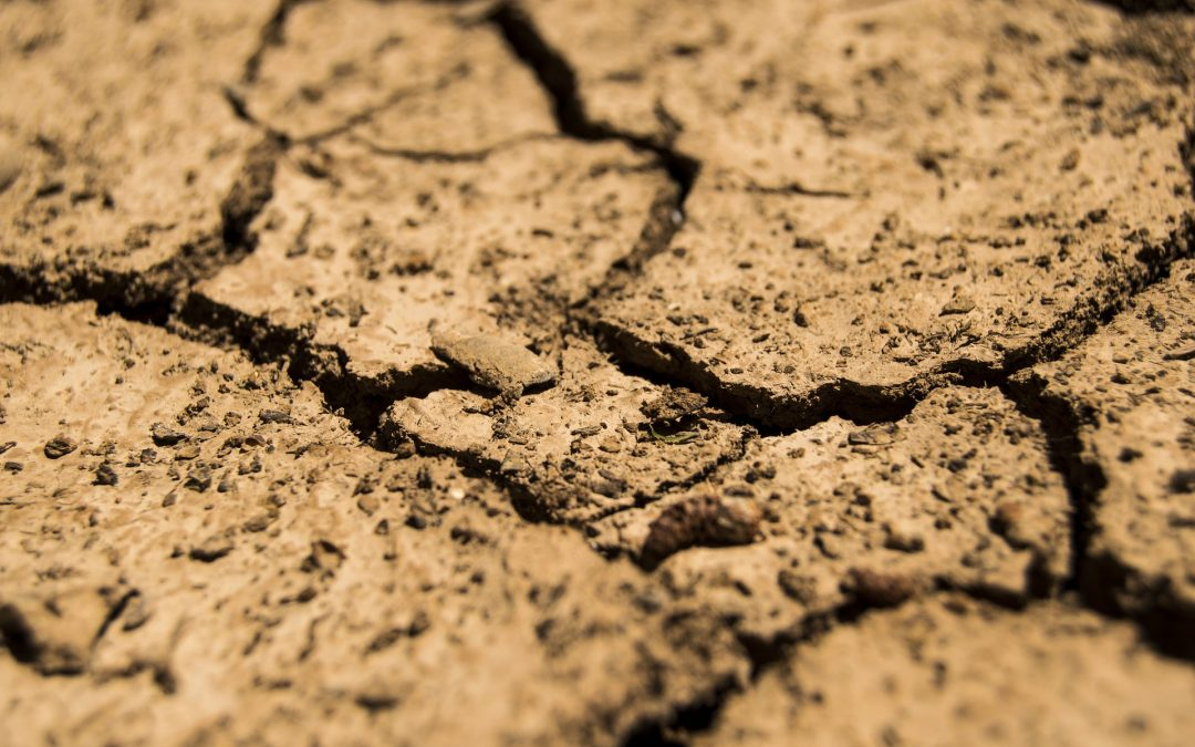 S.O.S. El agua se está acabando